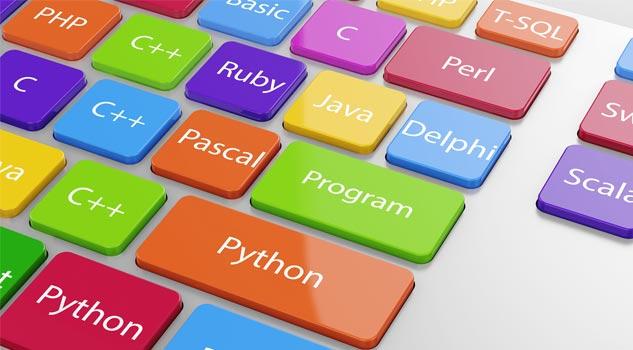 Web dizayner kursları
